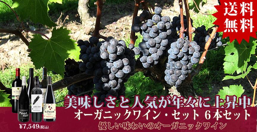 画像2:オーガニックワイン・セット